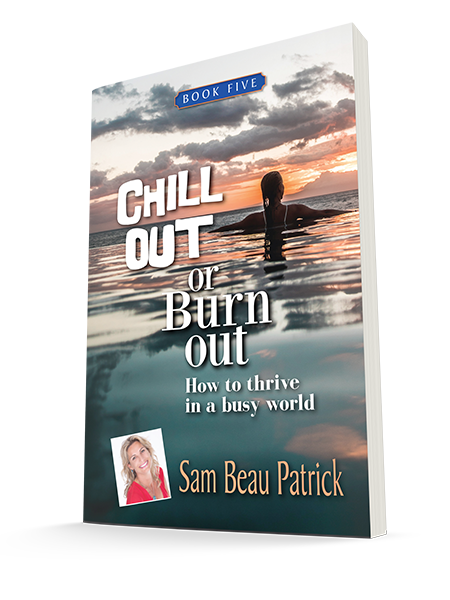 chill-out-or-burn-out_3d-cover-NEW